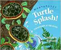 Subtraction Read Aloud: Turtle Splash!