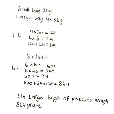 4th Grade Math Journal Task 9