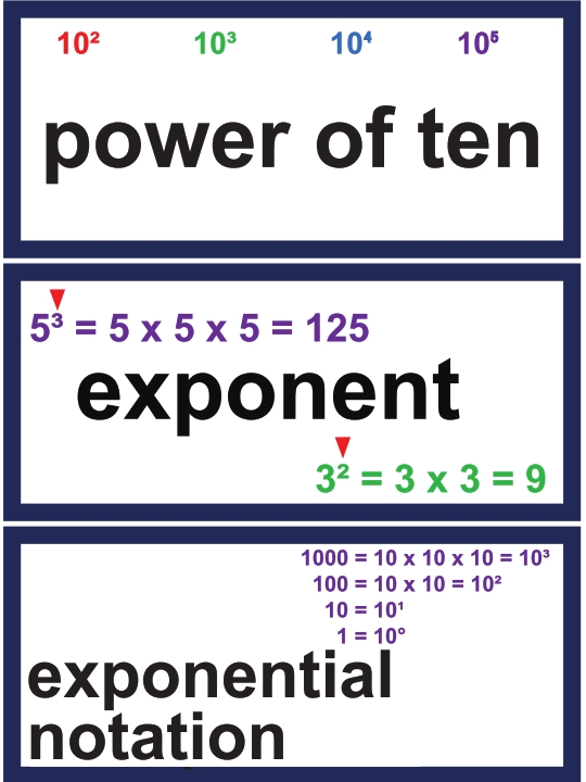 5th Grade Math Vocabulary Cards