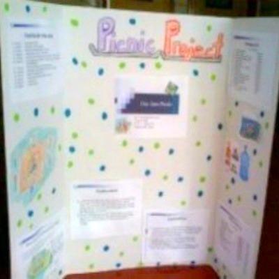 Math Project: A Class Picnic