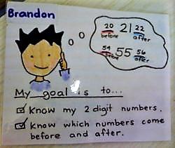ECAM Individual Student Goals