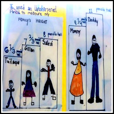Math Project: Who is the Tallest?