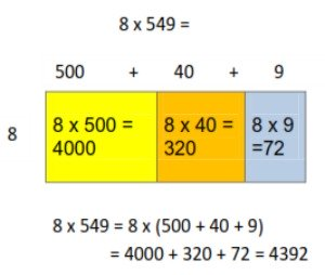 Area Model: 1 x 3-digit multiplication