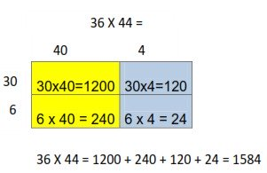 Area Model: 2 digit x 2 digit